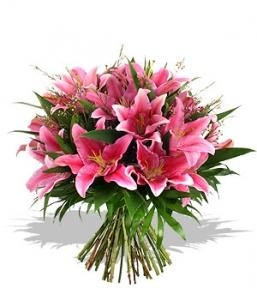 Love for lilies